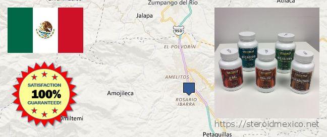 Where to Buy Anabolic Steroids online Chilpancingo de los Bravos, Mexico