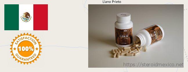 Where to Buy Anabolic Steroids online San Miguel de Papasquiaro, Mexico