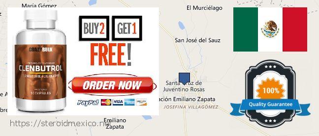 Where Can I Buy Anabolic Steroids online Santa Cruz de Juventino Rosas, Mexico